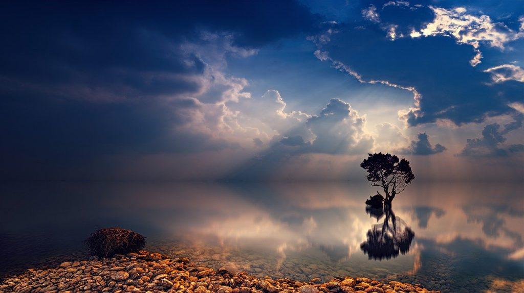 sunset-3195637 日没 日の出 空 ツリー サンビーム 夕暮れ 海 ミラーリング 反射 夕方の空 雲